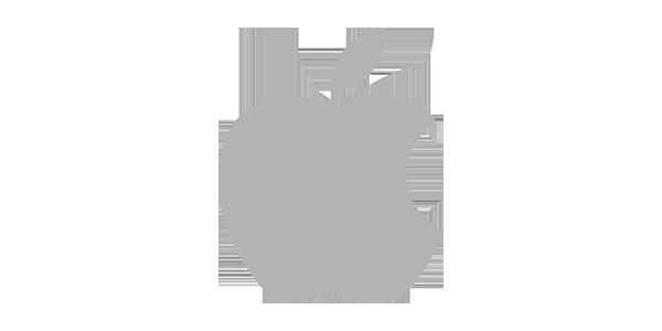 Ремонт ноутбуков Apple в Праге - Сервисный центр ZoomTech